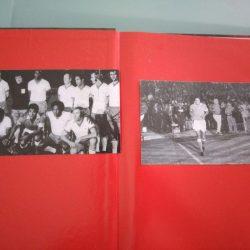 História visual do S. L. Benfica - Mário Pereira
