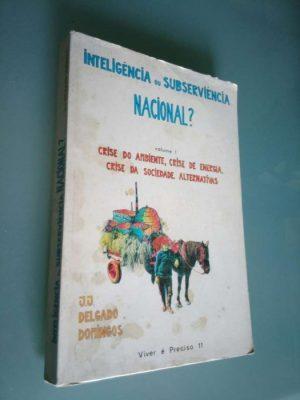 Inteligência ou subserviência nacional? - J. J. Delgado Domingos