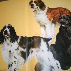 La Gran Enciclopedia del Perro - Joan Palmer