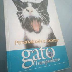 Gato - O companheiro (personalidade e carácter) -