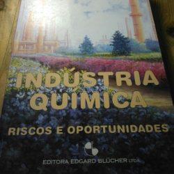 Indústria Química - Riscos e Oportunidades - Pedro Wongtschowski