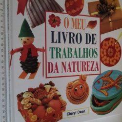 O meu livro de trabalhos da natureza - Cheryl Owen