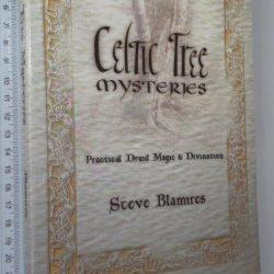 Celtic tree mysteries - Steve Blamires