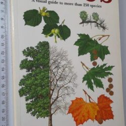The illustrated book of trees - Eric A. Bourdo