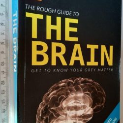 The rough guide to the brain - Barry J. Gibb
