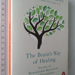 The brain's way of healing - Norman Doidge