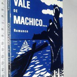 No vale de Machico - Carlos Cristóvão