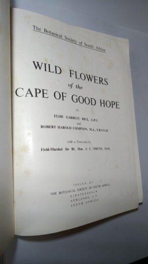 Wild flowers of the Cape of Good Hope - Elsie Garrett Rice