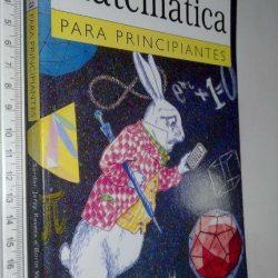 Matemática Para Principiantes - Ziauddin Sardar