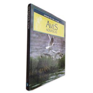 Aves Aquáticas (Animais de todo o mundo)