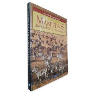 Mamíferos Ungulados e Lagomorfos (Animais de Todo o Mundo)